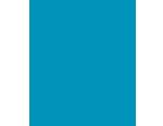 icon_salesforce